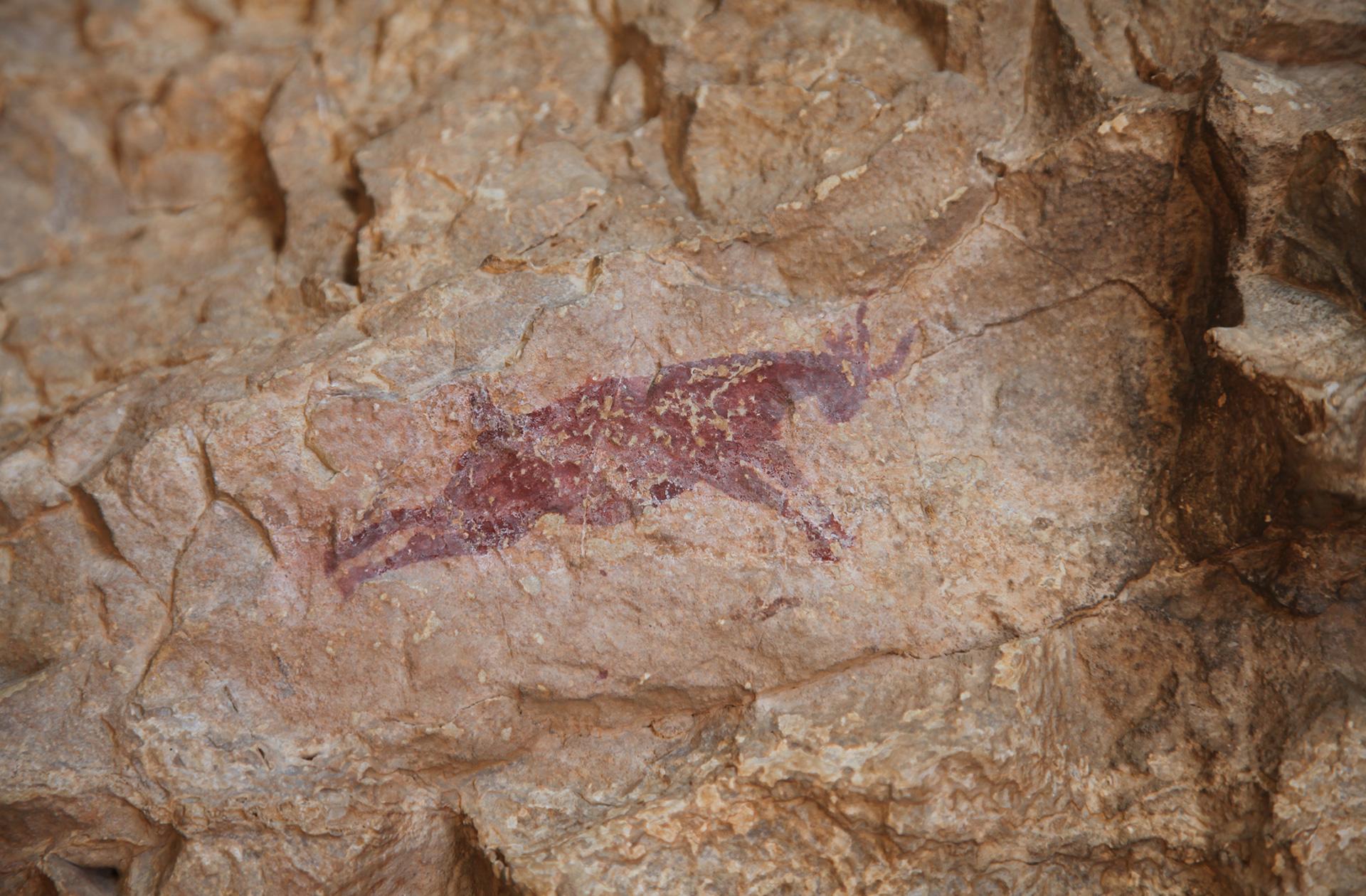 Pinturas Cova Remigia en Castellón