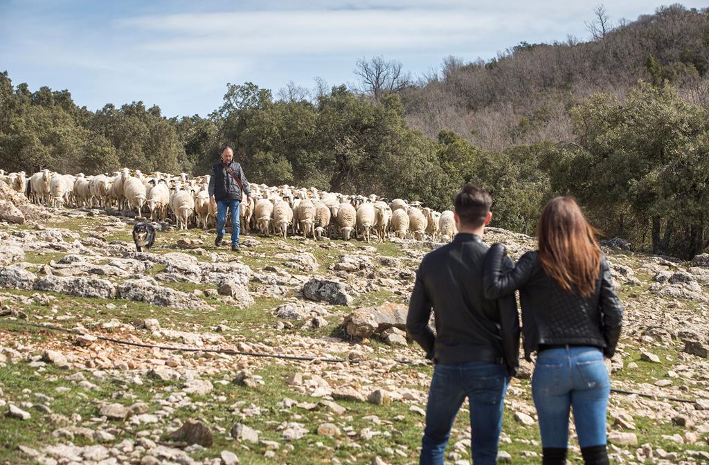Hacer Ruta del Pastoreo con Julio Bayot