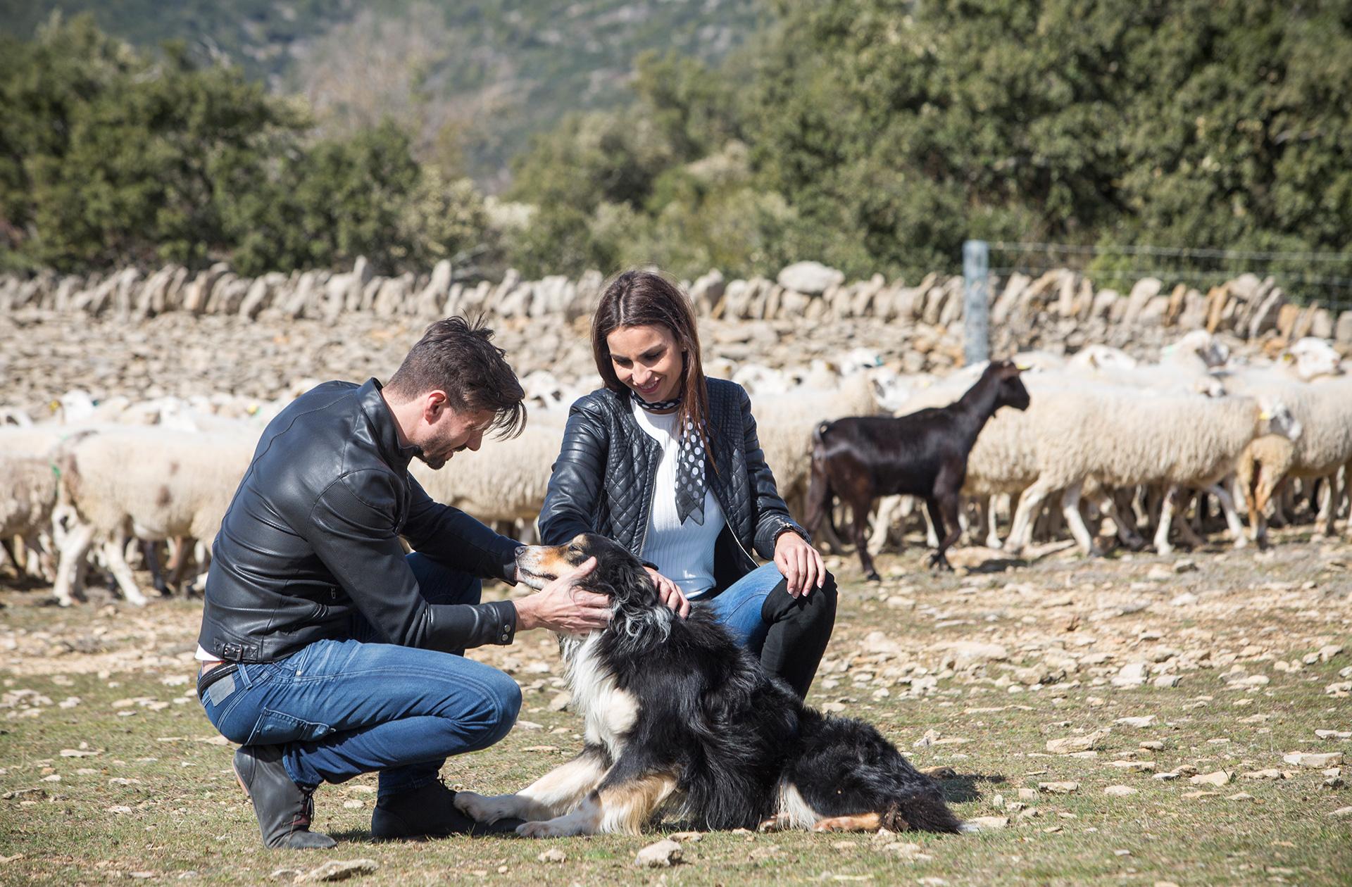 Ruta del Pastoreo Actividades Alt Maestrat